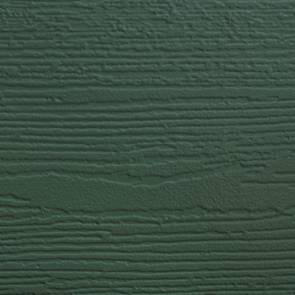 Green Deep Grain (S) - RAL 6009